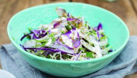 Brother-Hubbard-1391 middle eastern slaw
