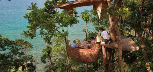 Treepod Dining Thailand