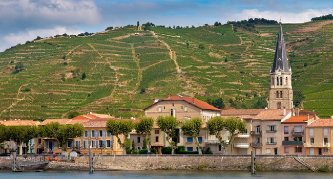 Rhone Wines you Need to Try