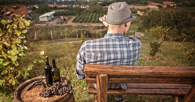 Natural Wines - The Growing Trend that's Making People Rethink Wine 7