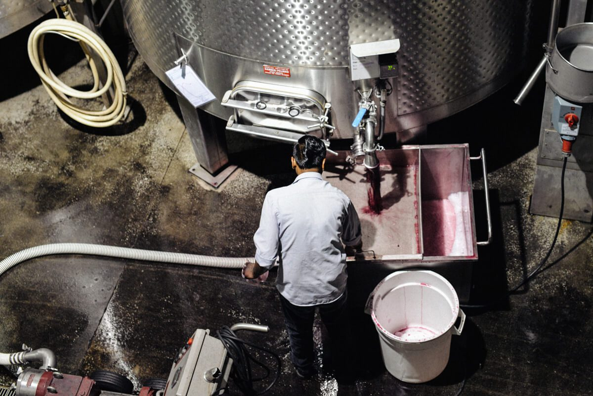At Quintessa winery making Bordeaux-style red wine in Napa