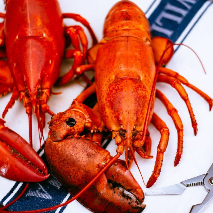 How to cook a lobster - Cooked lobsters by The Taste SF