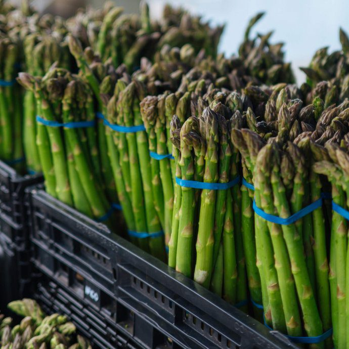 How to choose asparagus, the taste sf