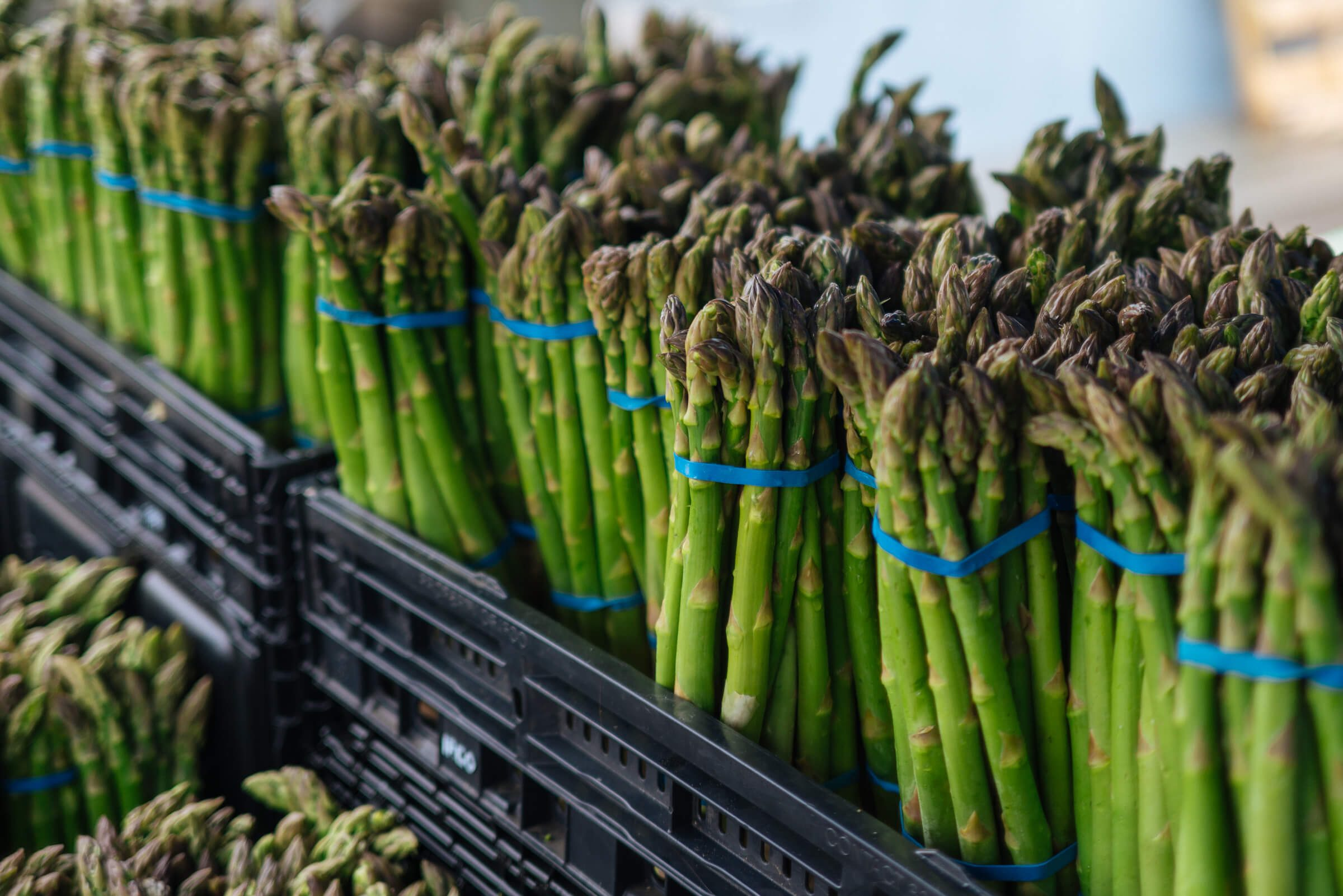 How to choose asparagus, the taste sf