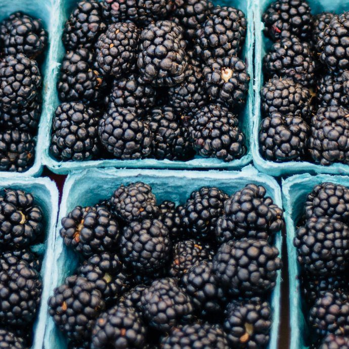 blackberries at the farmers' market, The Taste SF