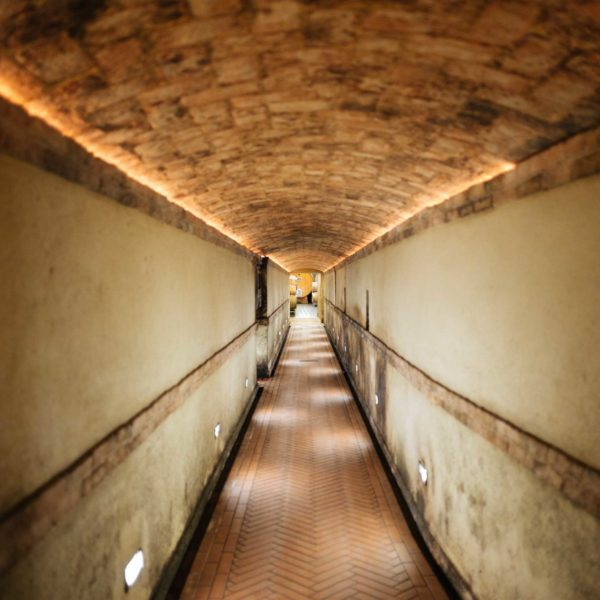 Visit vietti winery in Castiglione Falletto, Piedmont