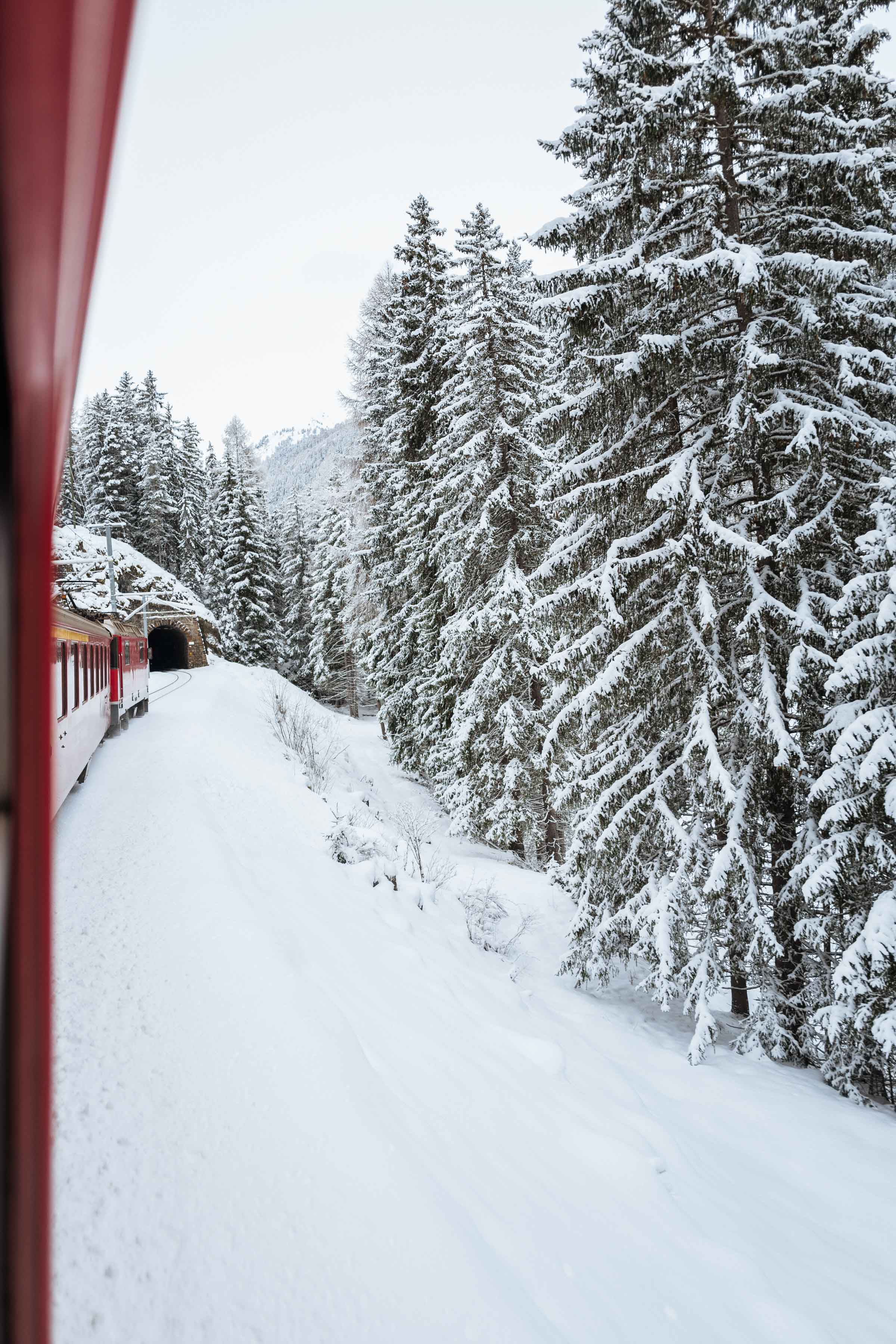Planning a trip to Switzerland in the winter? Take the train to this unpretentious Swiss ski resort town. Our guide includes travel tips, things to know , the best restaurants, food, and hotels in this unique alpine village. | thetastesf.com #travel #switzerland #winter #alps #train