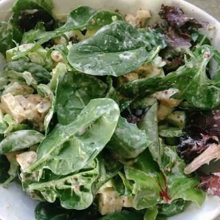 Healthier Dijon Chicken Salad from the Dude Diet   the Tastiest Book
