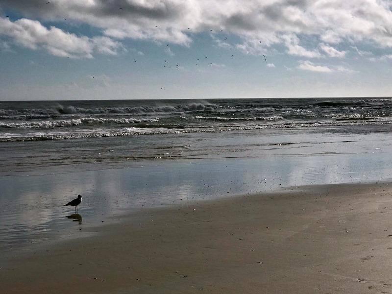 morning at Daytona Beach