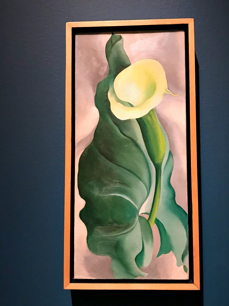 Georgia O'Keefe painting at OKC MOA