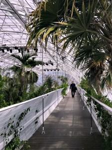 walking the Crystal Bridge