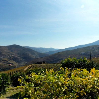 Three Days Exploring Porto and the Douro River Valley