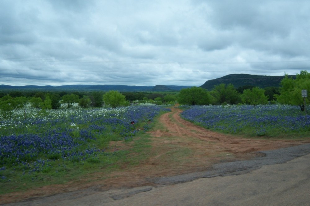 Our Favorite  Motorcycle Roads In Texas (6/6)