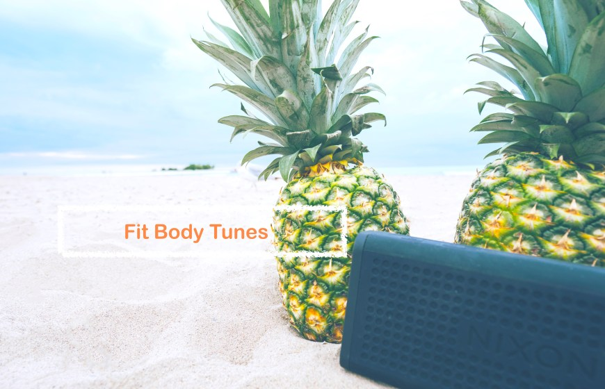 Beach Pineapple with Nixon Speakers