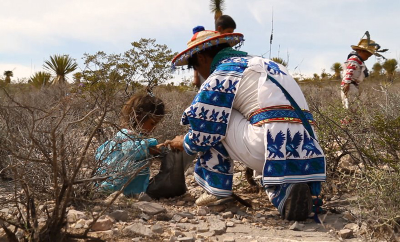 The Third Eye Magazine_Film_Huichols The Last Peyote Guardians Mexico-a film by Hernan Vilchez-253