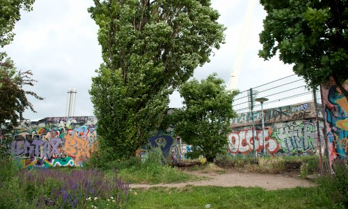 An Afternoon In Berlin's Mauerpark