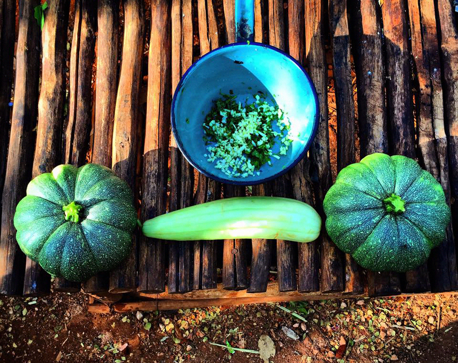 Our organic vegetables home grown at Lemurian Embassy.