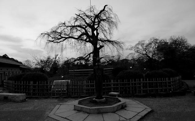 Yasaka shrine and Marayumi Park