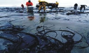 An oil spill polluted site in the Niger Delta