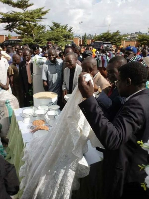 Benue State Governor Unveiled New Fruits and Grains ...