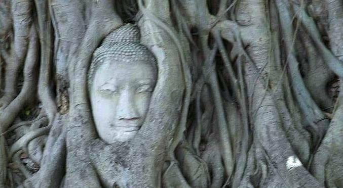 Happy Ayutthaya