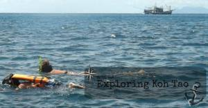 Snorkeling with kids in Koh Tao, open water.