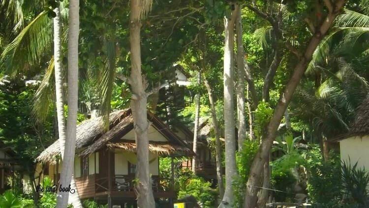 Koh Phangan, Thailand: Bungalows among the trees.