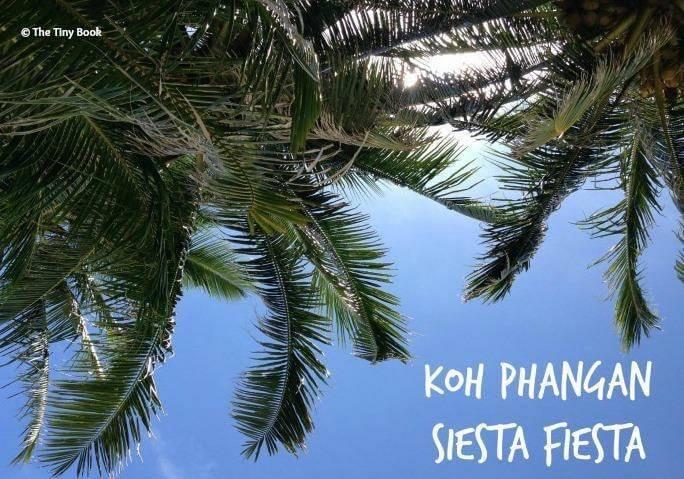 Palms trees Koh Phangan.
