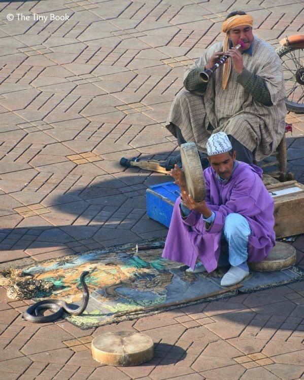 Snake charmers and cobras at Place Jemaa el Fnaa. Avoid scams in Marrakech