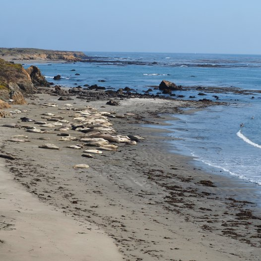 The second spot to view the seals