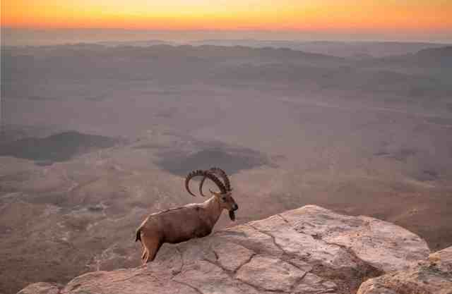Ramon Crater at sunrise, Israel - unique places in israel, israel tourist places photos