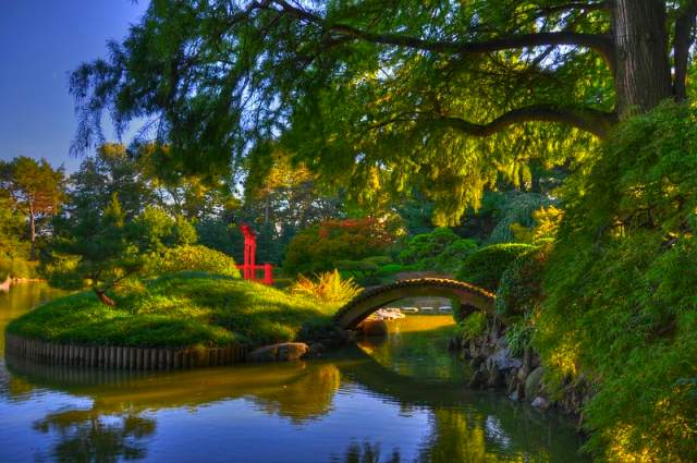 The Botanic gardens is one of the beautiful things to see in brooklyn. a great place to visit in brooklyn