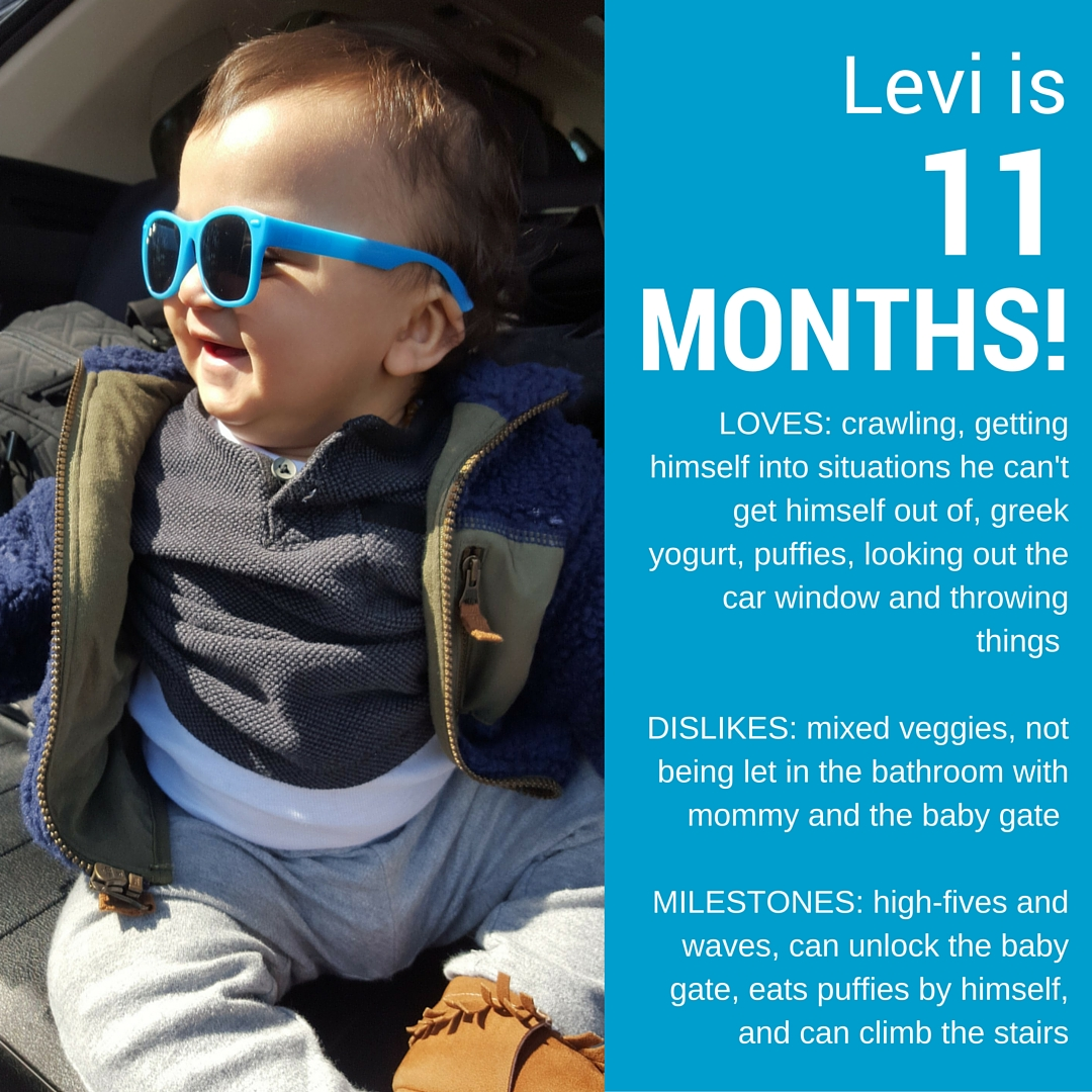 Levi is 11 months old!