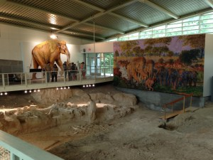 Inside the Research Center at Waco Mammoth