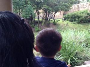 Tyler on Kilimanjaro Safari
