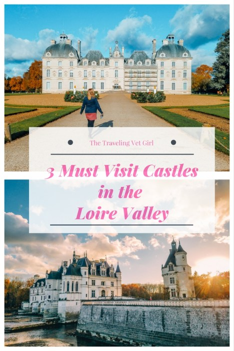 pinterest loire valley