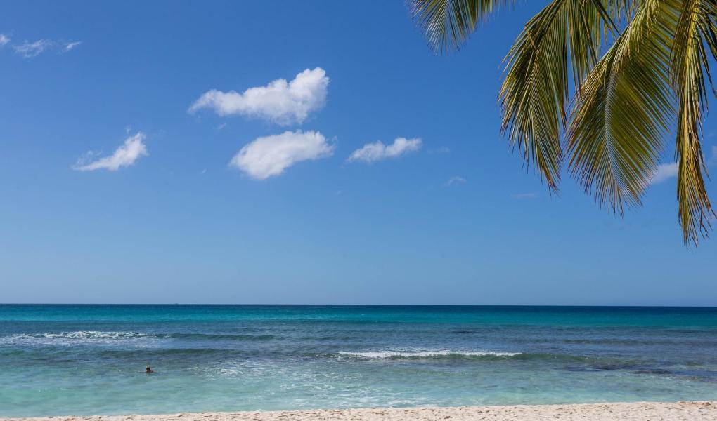 Dominican Republic Covid