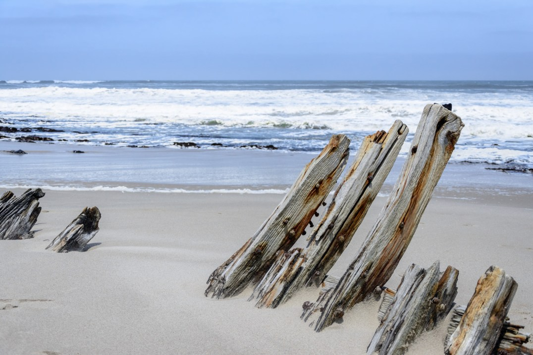 The ribs of an old timber ship, buried in the sand on the Skeleton Coast - Photo Credit: dconvertini/Flickr