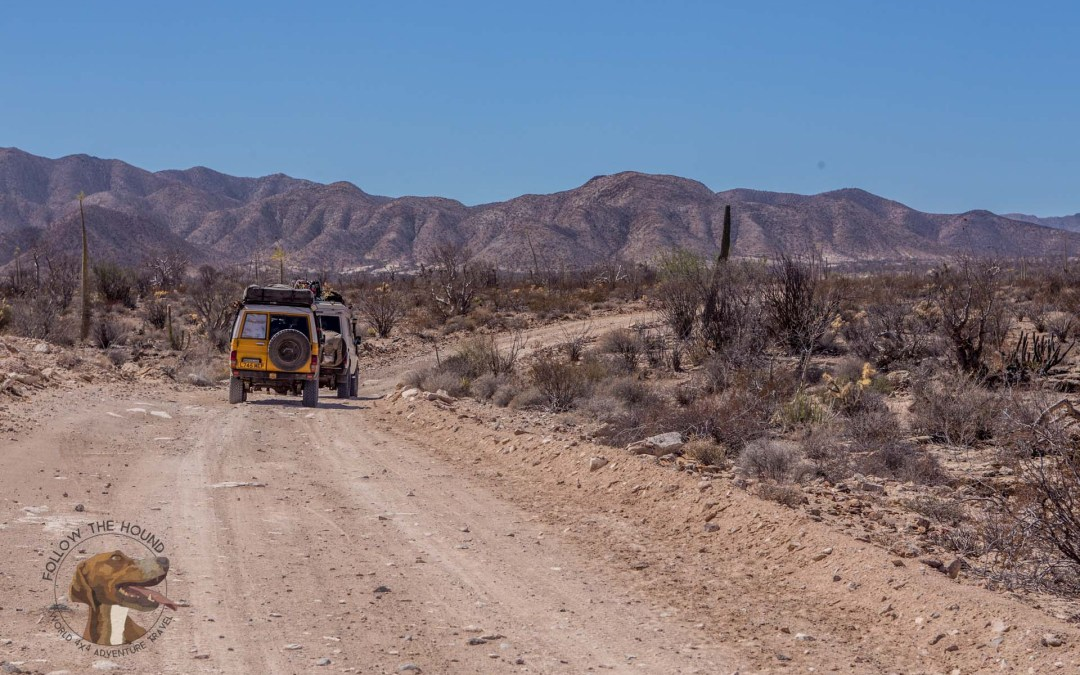 "Featured Travel Video of the Week: Follow the Hound ""Baja Days"""