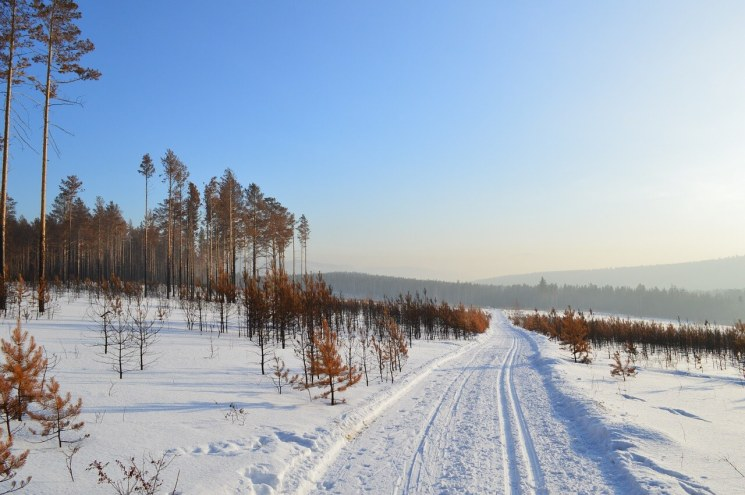Siberian Road towards Oymyakon