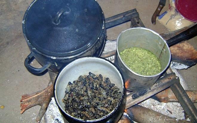 Mopani Mopane worms food