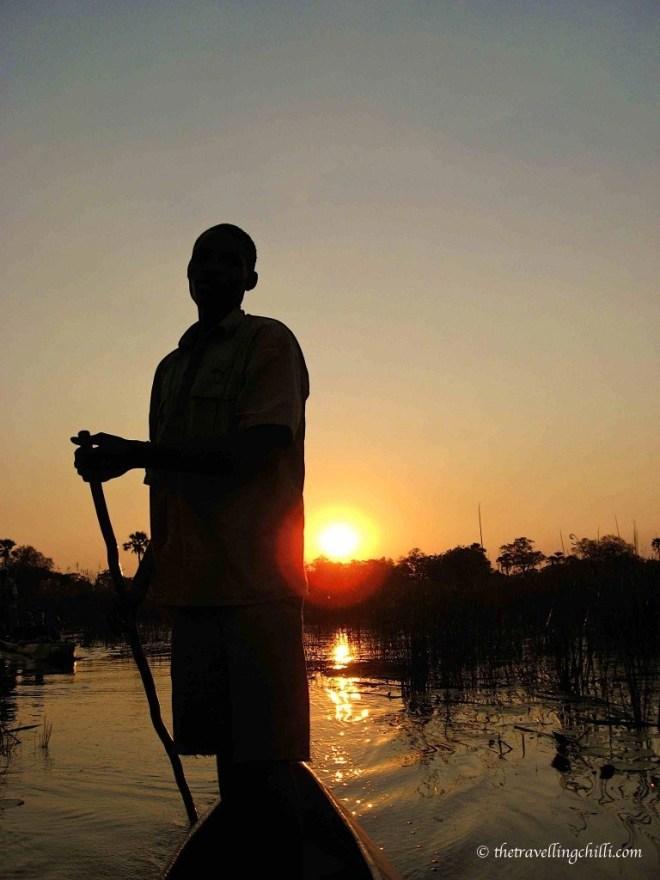 botswana delta sunset silhouette mokoro