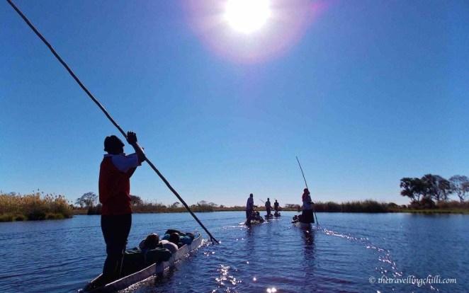botswana delta mokoro okavango