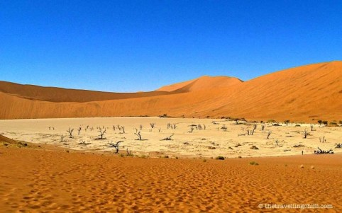 namibia deadvlei sossusvlei highlights