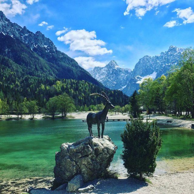 slovenia-goldhorn