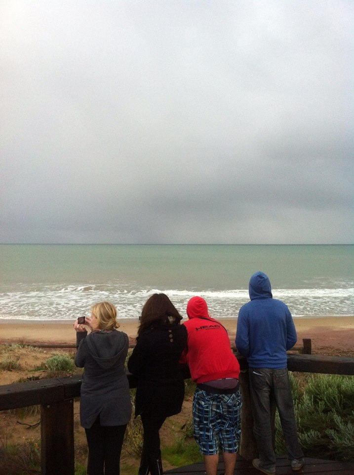 Whale watching in Port Elliot