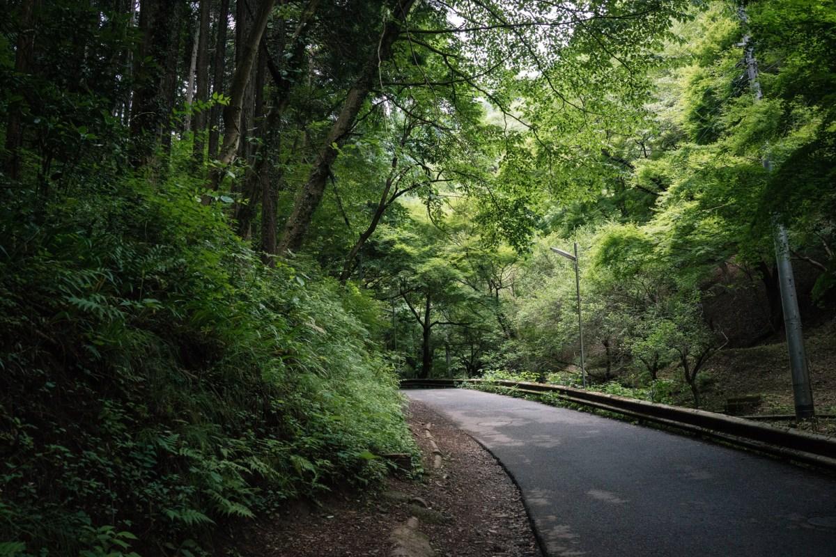 Beginning of Mt. Takao