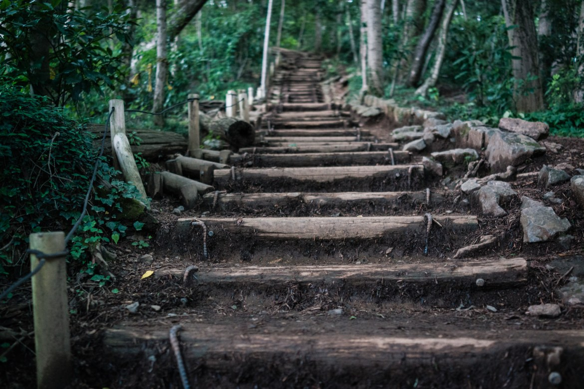 Stairs Up to Mt. Takao's Summit
