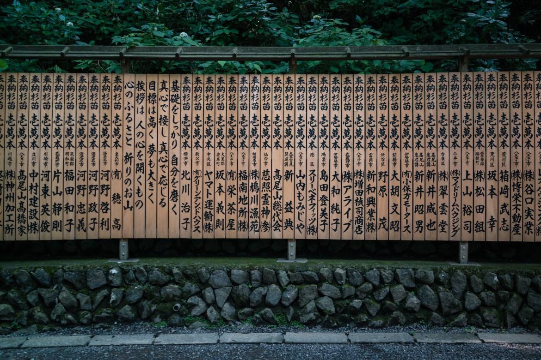 Mt. Takao Trail 1