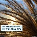 Harvest Party, this Sunday, with Good Day Sacramento!